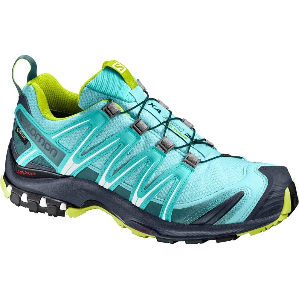 c378b74daa7d Salomon Women s XA Pro 3D GTX - Walk Hike from LD Mountain Centre UK